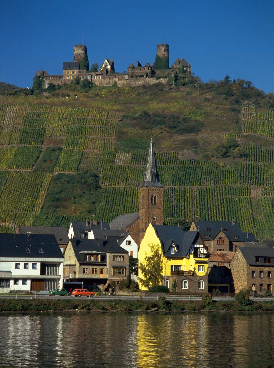 Wine Tasting Vineyards in France Ceritas California